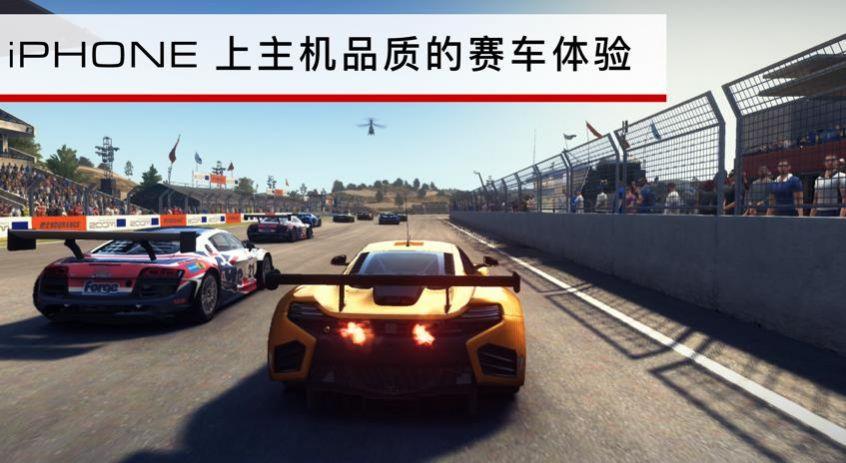 grid2020中文版 截图2